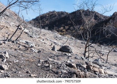 Landscape damaged by the Thomas Fire along the Pratt Trail in Ojai, California