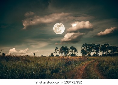 Landscape of dark night sky with clouds. Beautiful bright full moon above wilderness area in forest, Country road through fields of the countryside at nighttime. The moon taken with my own camera.