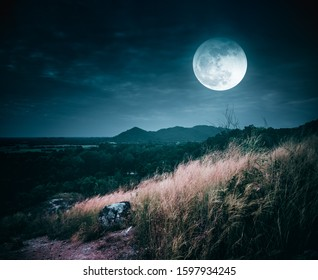 Landscape of dark night sky with clouds. Beautiful bright full moon above wilderness area in forest. Country road through fields of the countryside at nighttime. Serenity nature background.