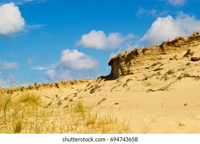 Landscape of the Dead Dune in Neringa, Lithuania