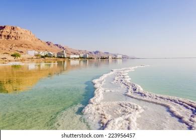 Landscape Dead Sea coastline in summer day