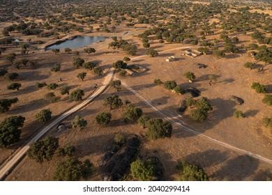 Landscape in the Dehesa de la Luz. Arroyo de la Luz. Extremadura. Spain.