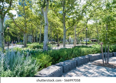 Landscape design in Battery Park, New York. Summer, shade, exploration