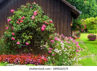 Landscape design with flowerbed at residential house, nice landscaping home garden, wooden wall overgrown by flowers and plants in summer. Beautiful landscaped backyard or front yard.