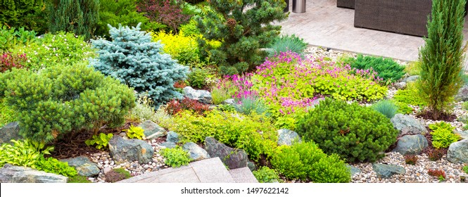 Landscape design with flowers, stones and coniferous plants. Landscaping panorama of home garden. Beautiful view of landscaped garden in backyard. Scenery of natural landscaping area in summer.