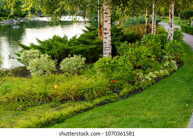 landscape design of plants and bushes near the pond