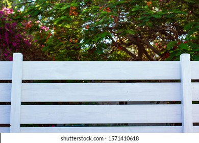 landscape design symmetry pattern white fence wooden deck foreground and unfocused blurred gardening green foliage background