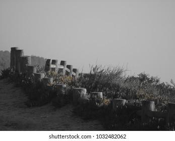Landscape Detail next to a Portuguese Beach near Lisbon, Portugal