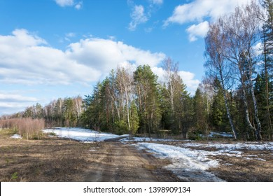 Landscape with a dirt road going into the forest and a beautiful cloudy sky on a spring day.
