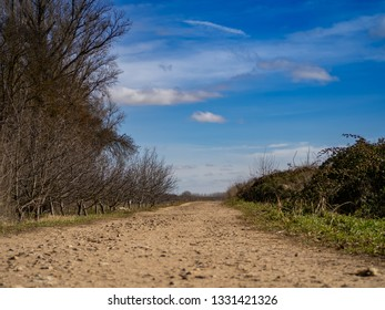 Landscape with a dirt road in nature on a cloudy day