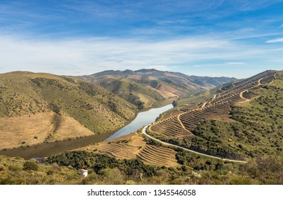 Landscape of the Douro river meandering through mountains, with the terraces of the port wine vineyards, near the mouth of the river Coa, in Vila Nova de Foz Coa, Portugal.