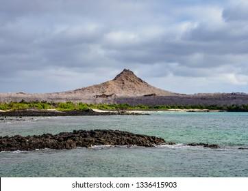 Landscape of the Dragon Hill area, Santa Cruz or Indefatigable Island, Galapagos, Ecuador