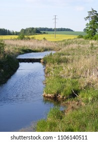 Landscape with drainage ditch in wild nature. Far away is visible barrier created by the beaver. Summer in Latvia countryside, sunny day.