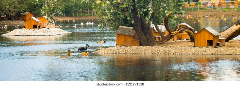 landscape with the duckhouses