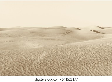 "landscape ""dunes in the desert"""