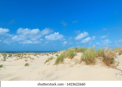Landscape dunes and empty beach at Dutch island Terschelling