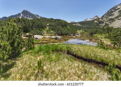 Landscape of Dzhano peak and Banski lakes, Pirin Mountain, Bulgaria