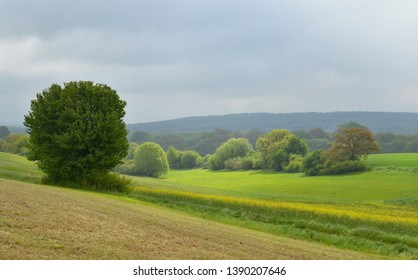 Landscape in the Eifel in Germany