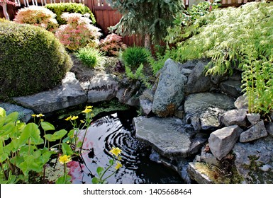 Landscape elements water feature focal point designed landscape water flowing  waterfall granite rocks and boulders shrub and ornamental trees background