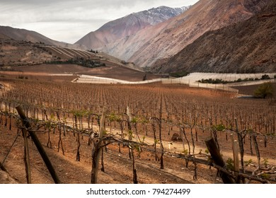 Landscape in Elqui Valley. Nort of Chile