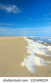 Landscape empty beach with sea foam surfs and water
