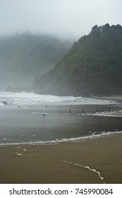 Landscape of empty virgin beach without human traces in the fog in Chile in Curiñanco beach