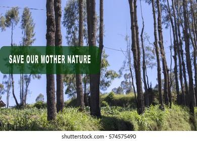 Landscape and environment nature conceptual words.