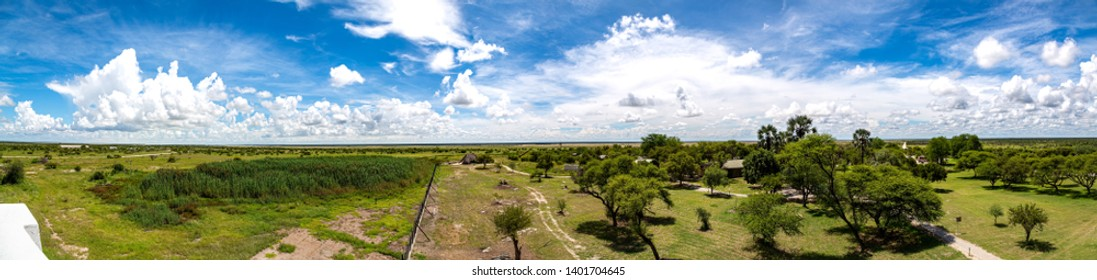 Landscape at the Etosha-Nationalpark in northern Namibia during summer
