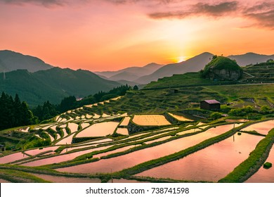 Landscape at evening, Terrace rice fields, Kumano, japan