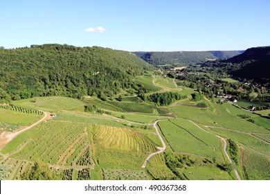 Landscape of the famous vineyards of Jura