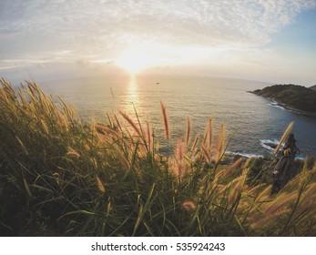 landscape fantastic sunset on the wheat field sunbeams glare