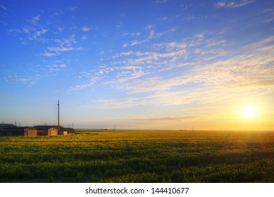 Landscape of farm buildings being lit by rising sun over rapeseed crop field