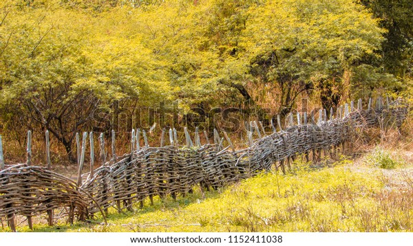 a landscape with a fence of sticks, amid the mountains, creative photo