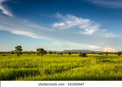 Landscape of field and beautiful clouds in countryside of Thailand