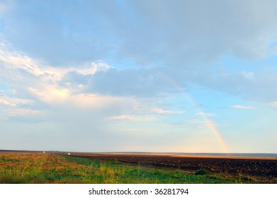 landscape with field in summer and rainbow