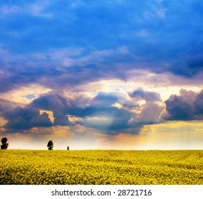 Landscape - field of yellow flowers and cloudy dramatic sky