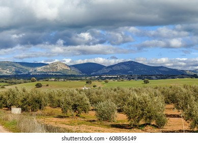 Landscape with fields and mountains in province of Albacete, Spain
