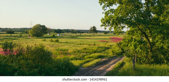 Landscape, floodplain, sun, green grass, meadows, trees, winding road to the distance.