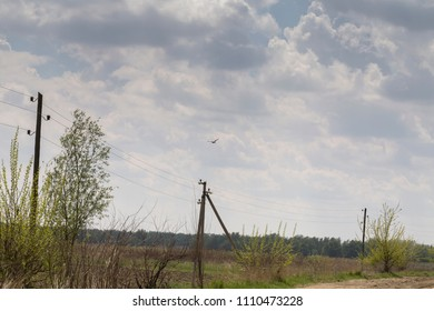Landscape with flying stock. The power transmission line and the cloudy sky.