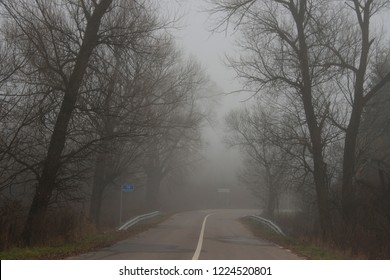 """landscape - fog in  late fall /on road signs it is specified in Russian: """"14 mosavtodor"""" and village """" Nizhnevo"""""""
