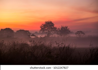 Landscape with a foggy morning at sunrise. Calm nature art photography.