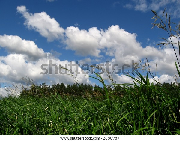 landscape - forest and cloudly sky, beauty place, rest time