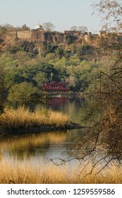 Landscape with fortress and old hunting shelters in a lake of Ranthambore National Park, Rajasthan, India