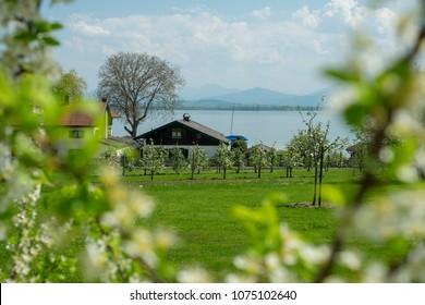 Landscape Fraueninsel Chiemsee in Bavaria, Germany in spring