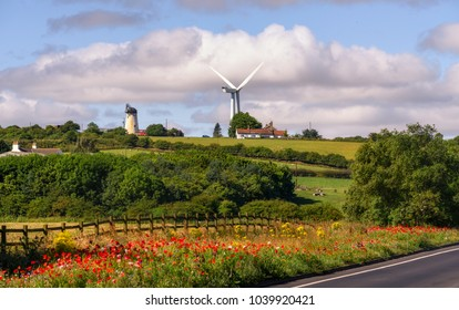 Landscape with fresh flowers,  windmills and houses  in Hartlepool, UK