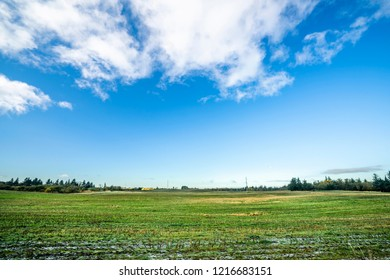 Landscape with frozen green field in the fall under a blue sky in bright daylight
