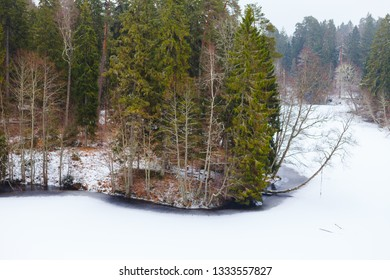 Landscape with a frozen lake and pine trees on hills