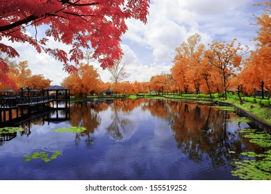 Landscape of a garden by the lakeside in infrared