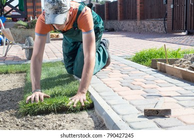 Landscape Gardener Laying Turf For New Lawn