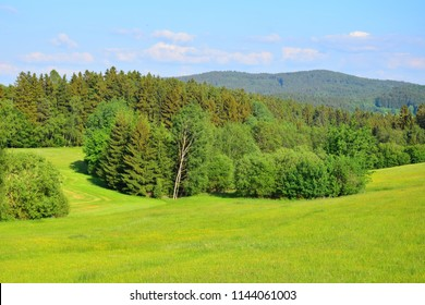 """Landscape in Germany, Bavaria, Upper palatinate, county of Cham, with meadows, trees and forest under a blue sky. """"Naturpark Oberer Bayerischer Wald"""", nature park upper bavarian forest."""